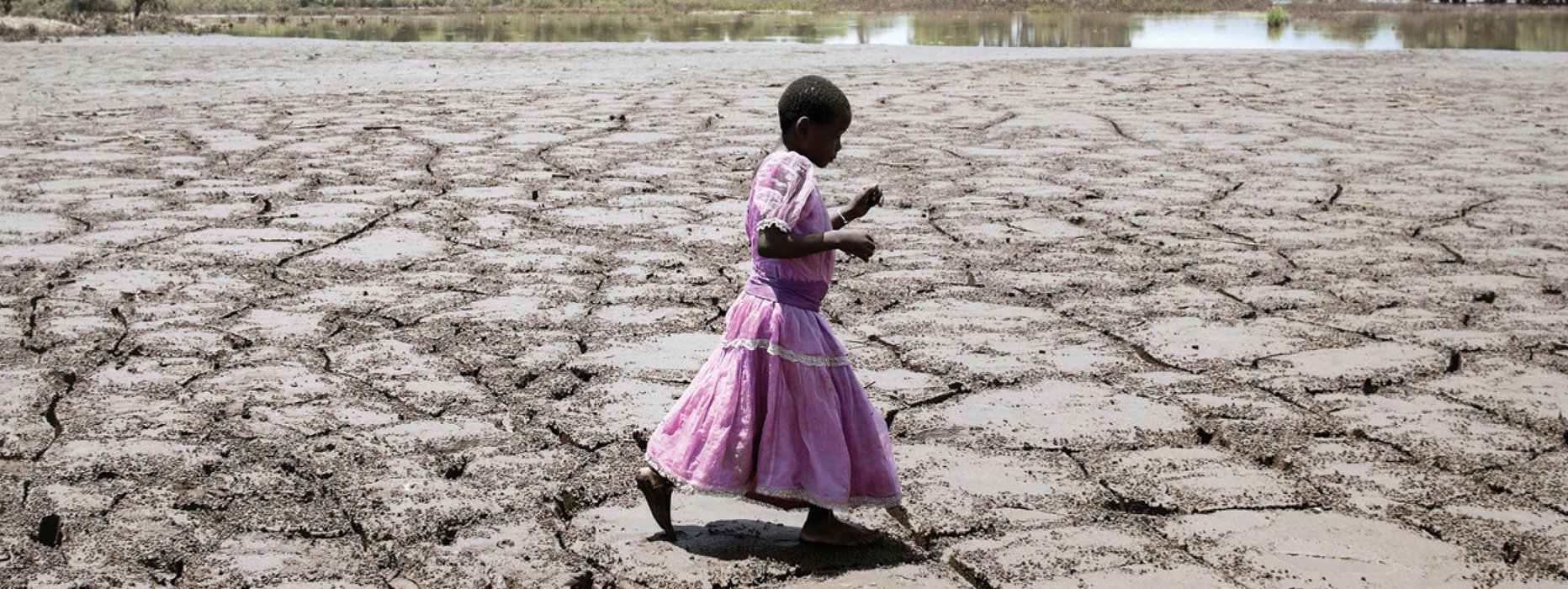AGRICULTURE AND FOOD INSECURITY RISK MANAGEMENT IN AFRICA
